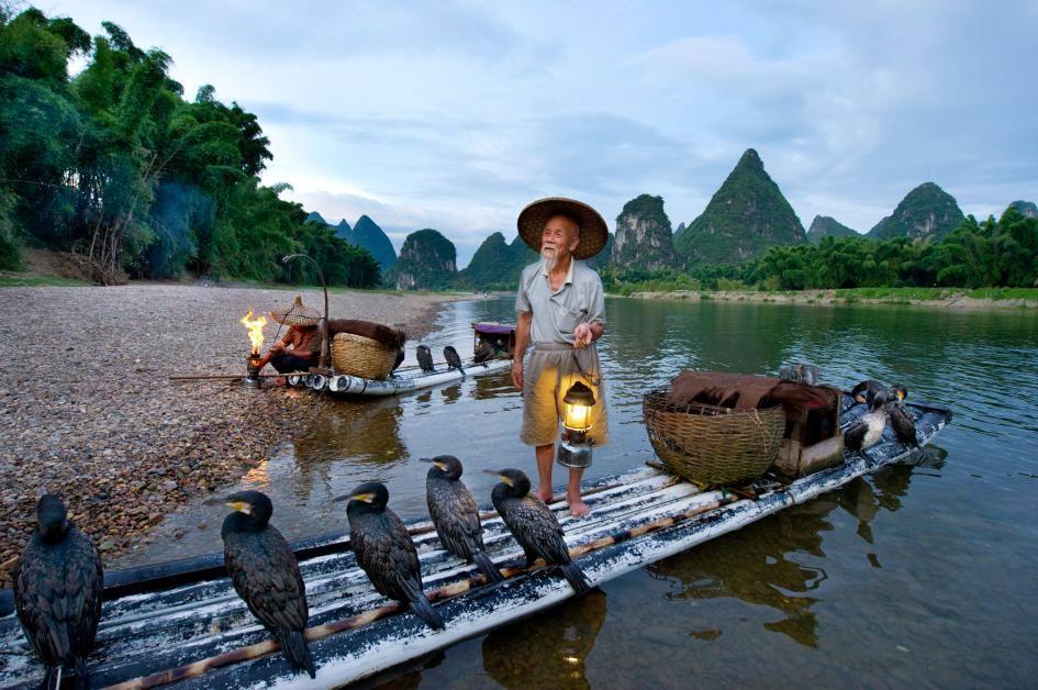 Pesca cormoranes rio Li